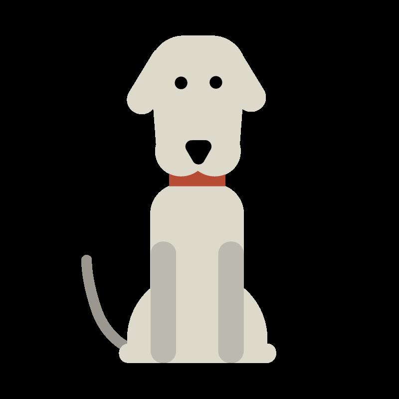 bali-dogs